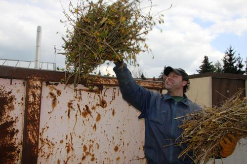 Bild: Kostenlose Entsorgung von kompostierbaren Abfällen in den Gartenanlagen des Landkreises Harz